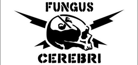 Fungus Cerebri Special 110516, a mix for Enough Records