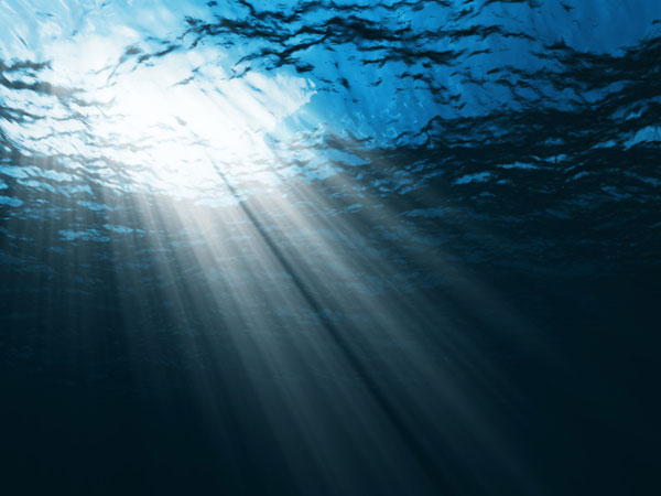 source: http://ocean.nationalgeographic.com/ocean/take-action/10-things-you-can-do-to-save-the-ocean/