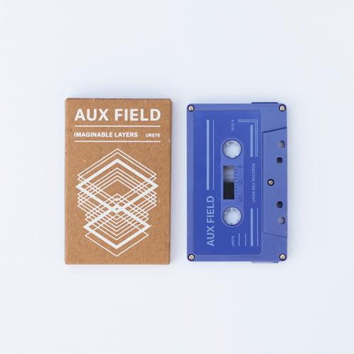 aux-field